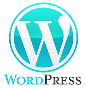 spécialiste CMS WordPress